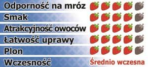 Korona-pl