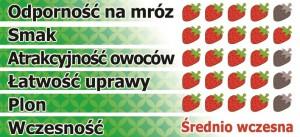 Polka-pl