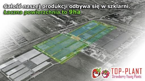topplant_z_lotu_ptaka_A3-EN - Copy