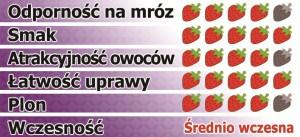arosa-pl