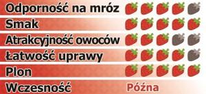dipred-pl